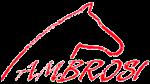 Ambrosi Sport Equitazione Verona