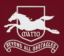 Logo Cavallo Matto