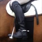 Fascia di rispetto per cavalli